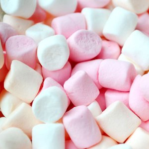 Marshmallow Fragrance Oil