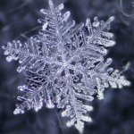 Snowflake Fragrance Oil