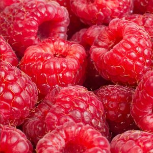 Raspberry Fragrance Oil