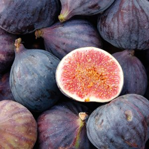 Fig Fragrance Oil