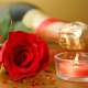 Champagne & Roses Fragrance Oil